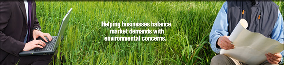 Helping businesses balance market demands with environmental concerns.
